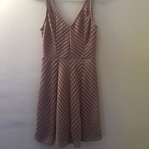 NWT Charlotte Russe Nude Skater Dress XS